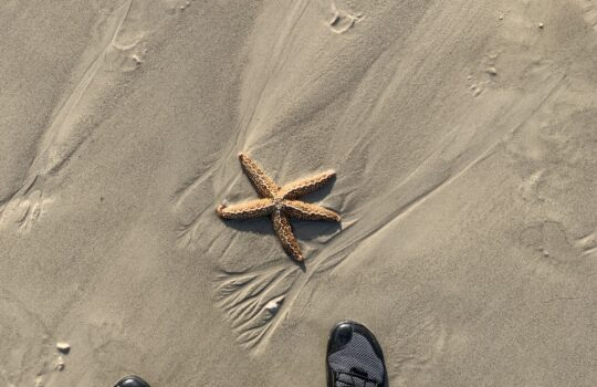 Finding my feet.