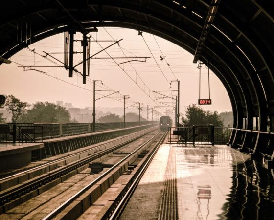 Doggone Train – Part 3 May 2019